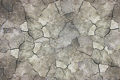 Dry land texture Stock Image