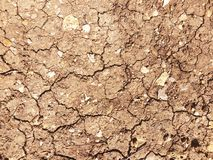 Dry land texture background. Dry cracked land soil background texture Royalty Free Stock Image