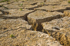 Dry land texture Royalty Free Stock Photo