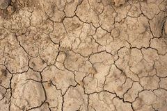 Dry land in urban Thailand Stock Photo