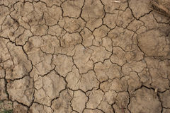 Dry land in urban Thailand Royalty Free Stock Images