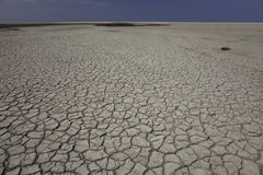 Dry Landscape. Parched and cracked mud during drought Royalty Free Stock Image