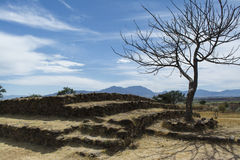 Dry Landscape Royalty Free Stock Photo