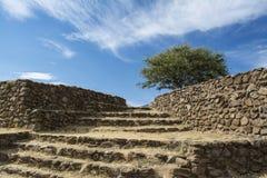 Guadalajara, Jalisco, Mexico Dry Landscape Royalty Free Stock Image