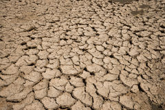 Dry landscape danger Royalty Free Stock Photos