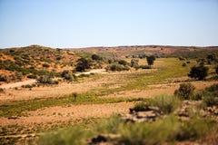 Dry desert landscape Royalty Free Stock Photo