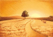 Dry Landscape Royalty Free Stock Image