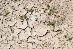 Dry landscape. Mud crack texture in danger Stock Photo