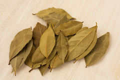 Dry laurel leaves Royalty Free Stock Photo