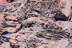 Dry Lava Basaltic Rock Royalty Free Stock Images