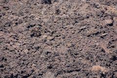Dry Lava Basaltic Rock Stock Image