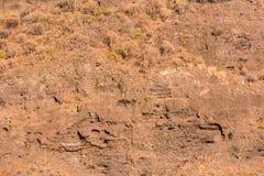Dry Lava Basaltic Rock. Stone Texture Background Stock Photo