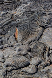 Dry Lava Flow Royalty Free Stock Photography