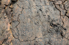 Dry Lava Texture Stock Images