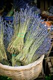 Dry Lavender Bunches Royalty Free Stock Photos