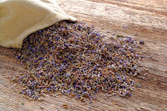 Dry Lavender Seeds and Burlap Bag over Old Wood royalty free stock images