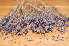 Dry lavender seeds on wooden background. Close up Stock Image