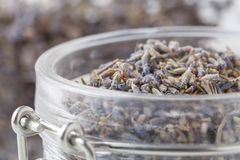 Dry lavender tea closeup. Selective focus stock images