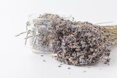 Dry lavender tea closeup. Selective focus royalty free stock photography