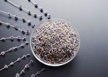 Dry lavender tea. Glass bowl with dried lavender tea and lavender flowers bouquet over grey board background royalty free stock photo