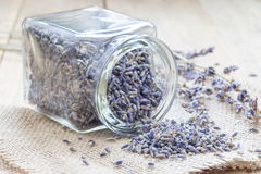 Dry lavender tea in glass jag and on wooden background. Horizontal stock photography