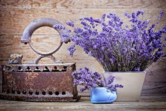 Dry lavender and vintage style Royalty Free Stock Photo