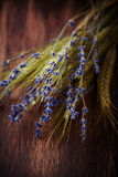 Dry lavender and wheat Royalty Free Stock Images