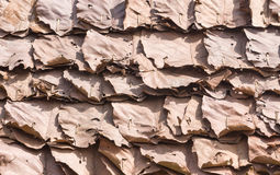 Dry leaf pattern Royalty Free Stock Images