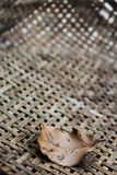 Dry leaf on texture of bamboo weaved background Royalty Free Stock Photos