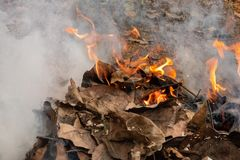 Dry leafs burning producing ash and smoke stock photography