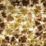 Dry leafs on wood. Royalty Free Stock Photography