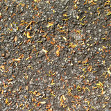 Dry leaves on the asphalt road background. Dry leaves on the asphalt road Royalty Free Stock Photo