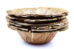 Dry leaves bowl Royalty Free Stock Photos
