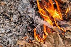 Dry leafs burning producing ash and smoke stock photos