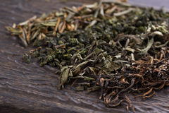 Dry leaves of different types of tea Stock Image