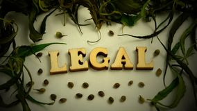 Dry leaves and grains of marijuana in the form of a frame on a white background. Vignetting. The word LEGAL is made of wooden lett