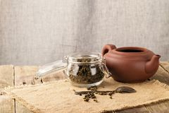 Dry leaves of green tea in a glass jar Stock Images