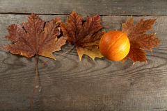 Dry leaves of  maple and pumpkin on a table Royalty Free Stock Images
