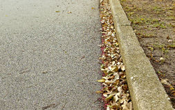 Dry leaves in a road gutter Stock Photos