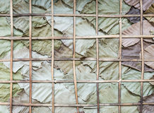 Dry leaves wall Royalty Free Stock Image