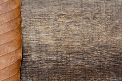 Dry leaves on wooden texture background Royalty Free Stock Photos