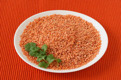 Dry lentil on a plate Royalty Free Stock Photo