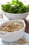 Dry lentils Stock Image