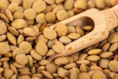 Dry lentils on wooden spoon, healthy food.  stock photo