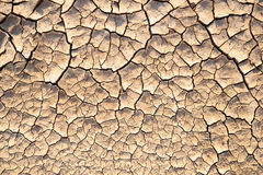 Dry lifeless cracked soil texture Royalty Free Stock Photos