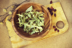 Dry linden flowers. In a wooden plate Stock Image