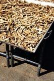 Dry Lingzhi mushroom Stock Photography