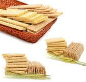Dry loaves and ears of wheat. Isolated on the white background. Collage royalty free stock photos