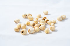 Dry lotus seed Royalty Free Stock Photography