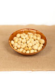 Dry Macadamia Nuts with Sea Salt Royalty Free Stock Images